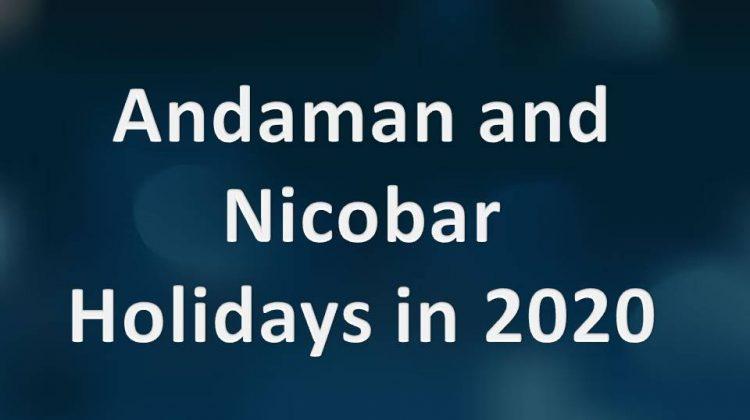 Andaman and Nicobar Holidays in 2020